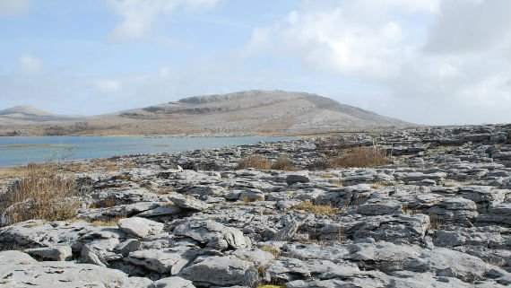 Details_burren hill back